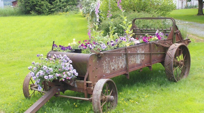 Inexpensive Ways to Landscape Your Yard