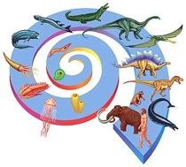 Origine della specie