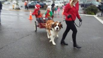 Santa Parade 16