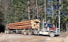 Peterbilt Log Truck by Peterbilt