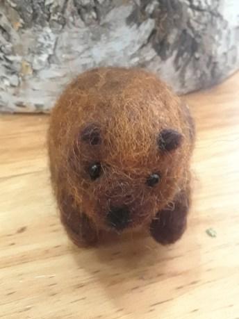 Beaver by Amanda Hanson