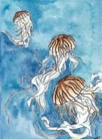 Jelly Fish by Amanda Hanson