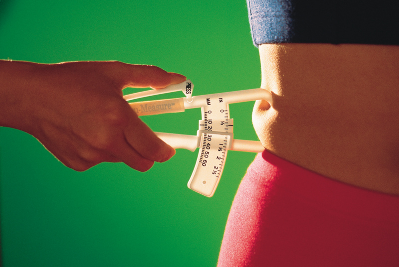 https://i1.wp.com/www.lexabean.com/images/Diet.jpg