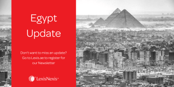 Egypt: Ever Given Inquiry Launched