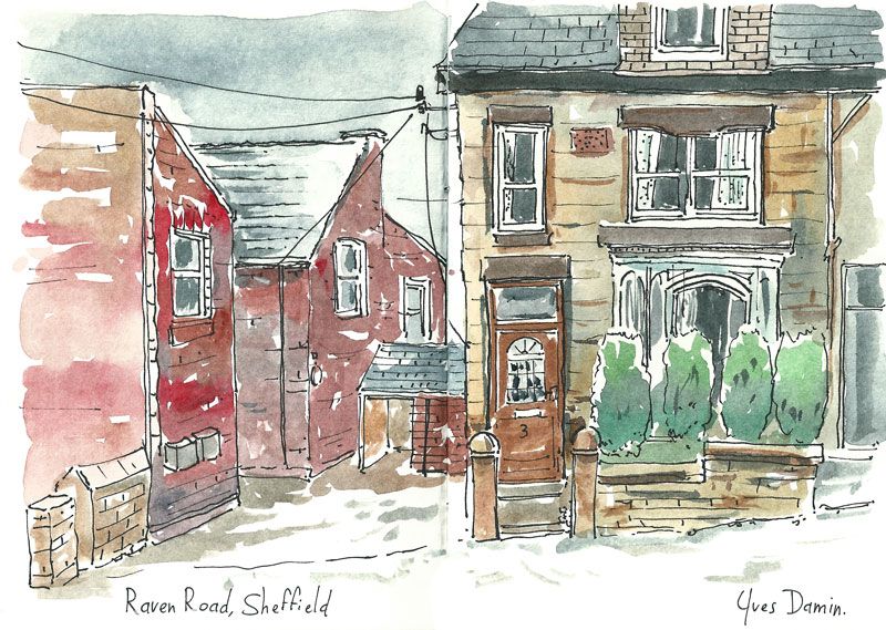 Sheffield_Raven_web