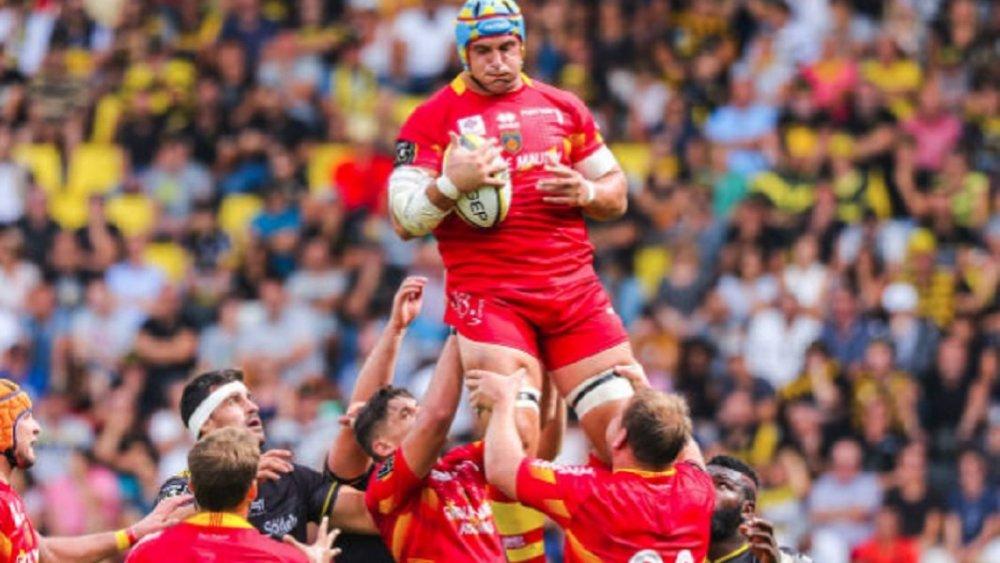top 14 perpignan berend botha prolonge rugby france xv de départ 15