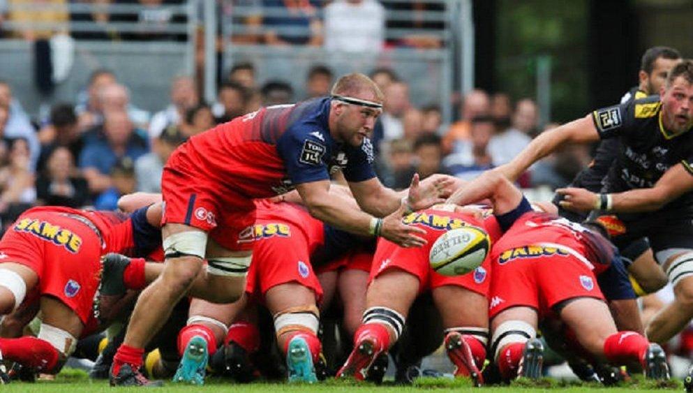 top 14 grenoble godener absent entre 4 et 6 mois rugby france xv de départ 15