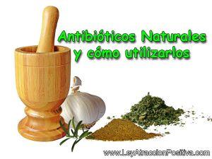 antibioticos-naturales-y-como-utilizarlos