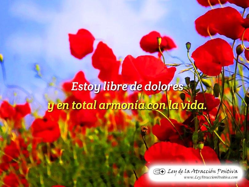 """""""¡Estoy Libre de Dolores y en Total Armonía con la Vida!"""""""