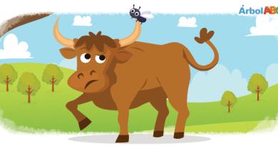 El mosquito y el toro