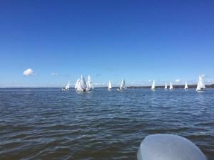 420s Sailing on Lake Eustis