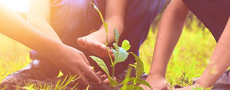initiatives pour l'environnement