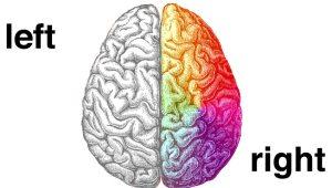LFM-Audio-Radio-Commercial-Brain