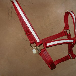 one-and-half-inch-halter-in-red.jpg