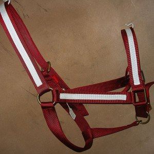 one-and-half-inch-halter-with-adjustable-chin-strap-in-red.jpg