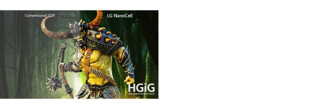 LG 43NANO79TND HGiG profile