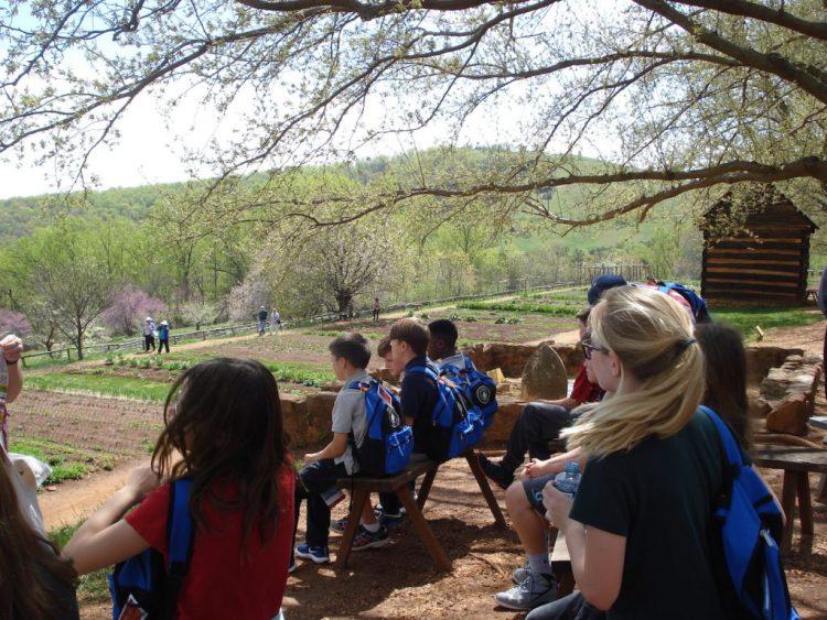 cabin and gardens - serve blog