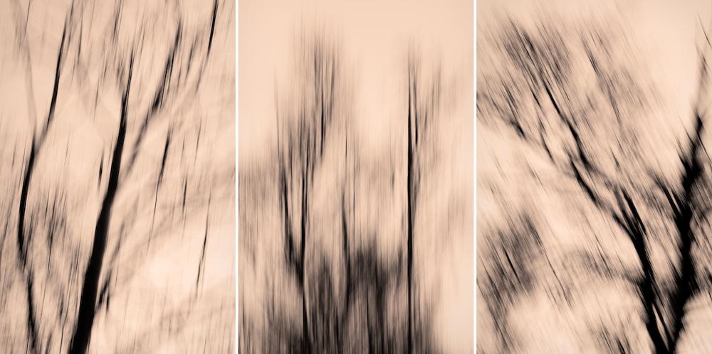 Triptyk Fotograf Lars-Göran Norlin