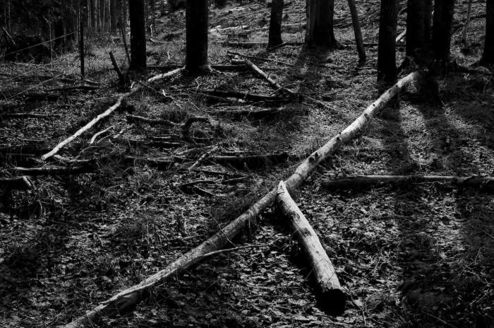 Selets bruk Fotograf Lars-Göran Norlin