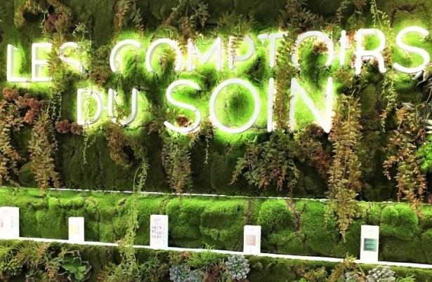 Ambiance végétale aux Comptoirs du Soin !