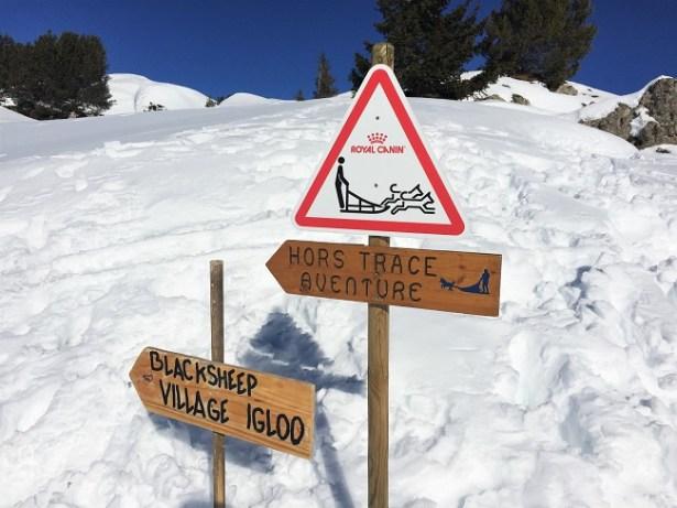activites-hors-ski-la-plagne-traineau