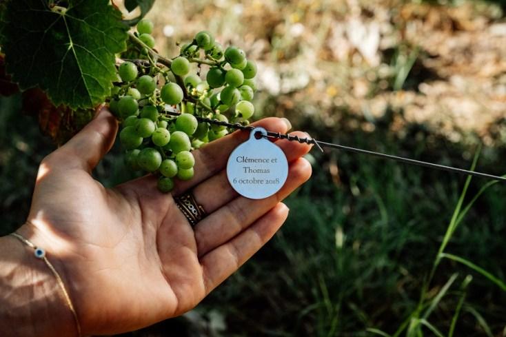 Voici un pied de vigne adopté par Clémence et Thomas amateurs de bon vin et donc heureux propriétaires temporaires de 6 pieds de vigne d'un domaine prestigieux.