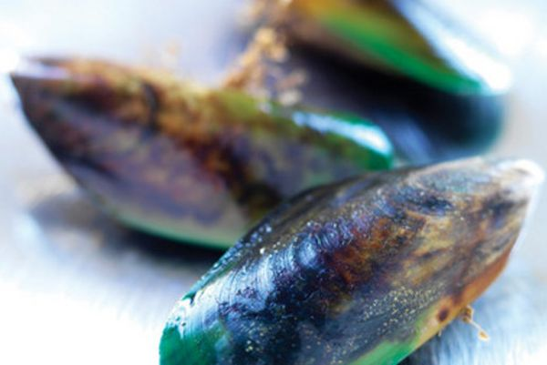Study shows green-lipped mussel extract to reduce arthritic pains