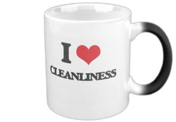 I love Cleanliness