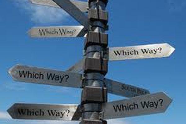 Wrong Turn to Life
