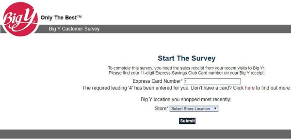 Big Y Survey