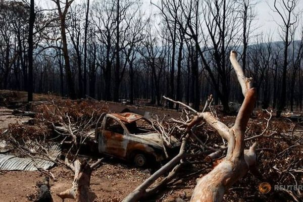 FILE PHOTO: A fallen tree rests on a burned car after a wildfire destroyed the Kangaroo Valley Bush Retreat in Kangaroo Valley, New South Wales, Australia.