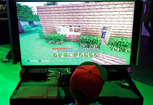 visitor plays the minecraft
