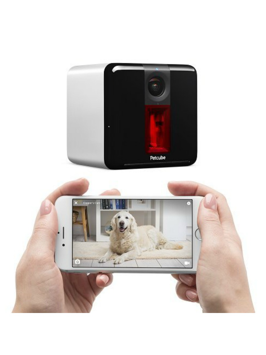 Petcube Play 1080p Interactive Pet Camera