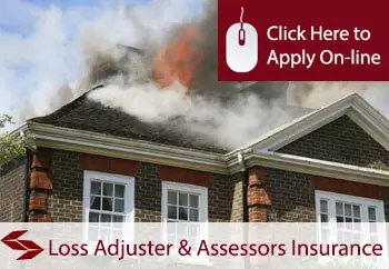 loss adjuster and assessor professional indemnity insurance