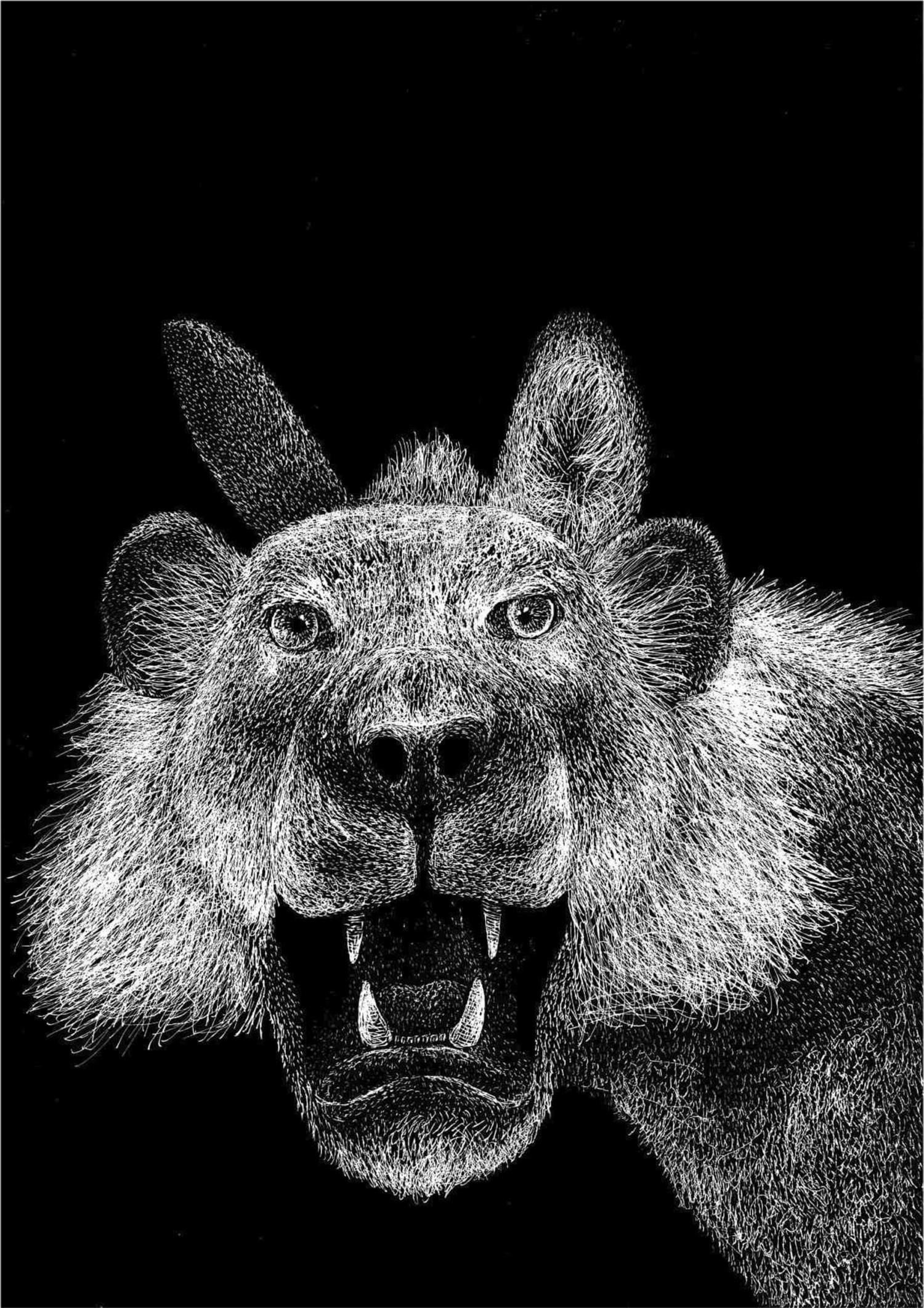 L'asino vestito della pelle di leone - Lia Mariani