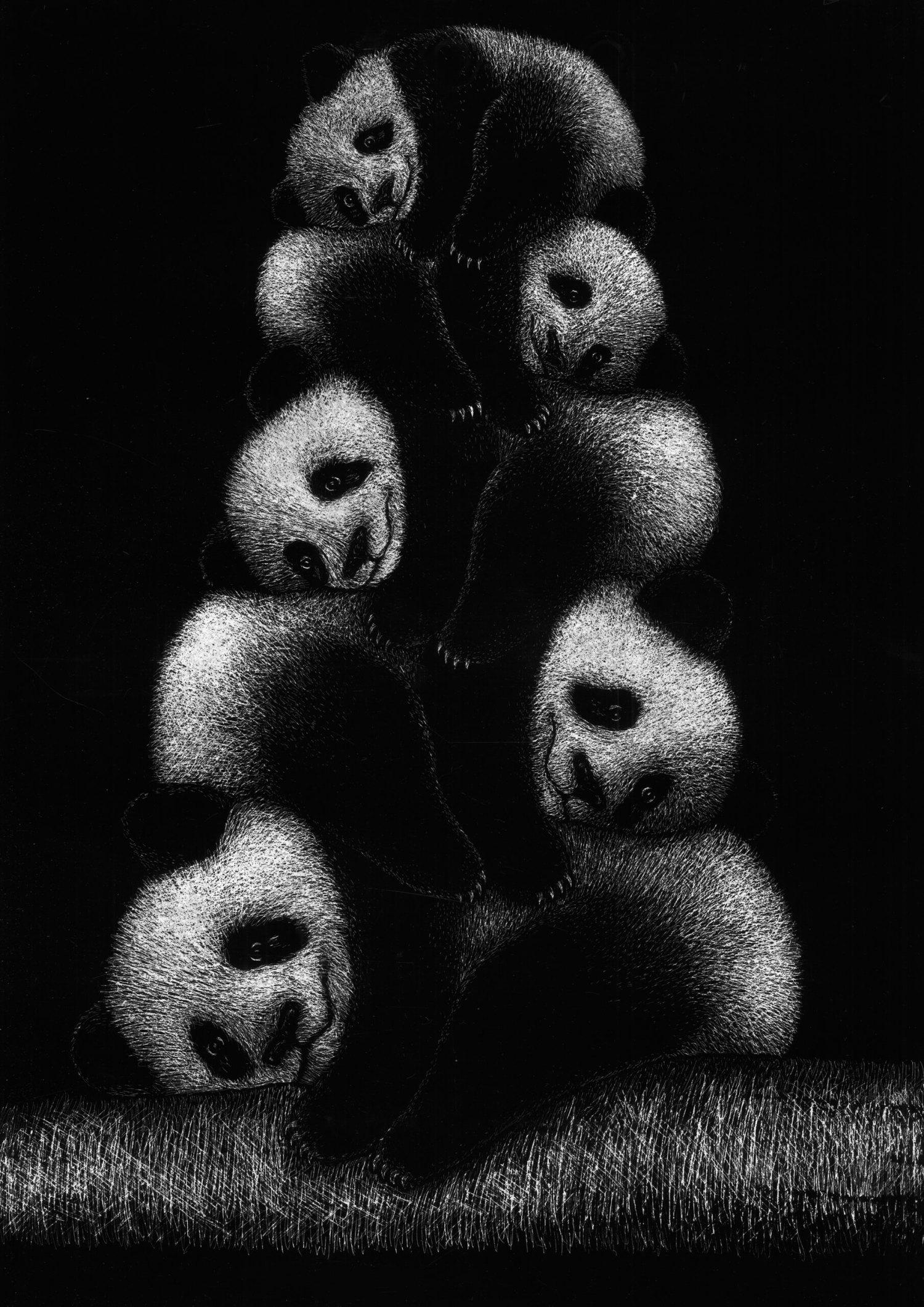 Panda - Lia Mariani