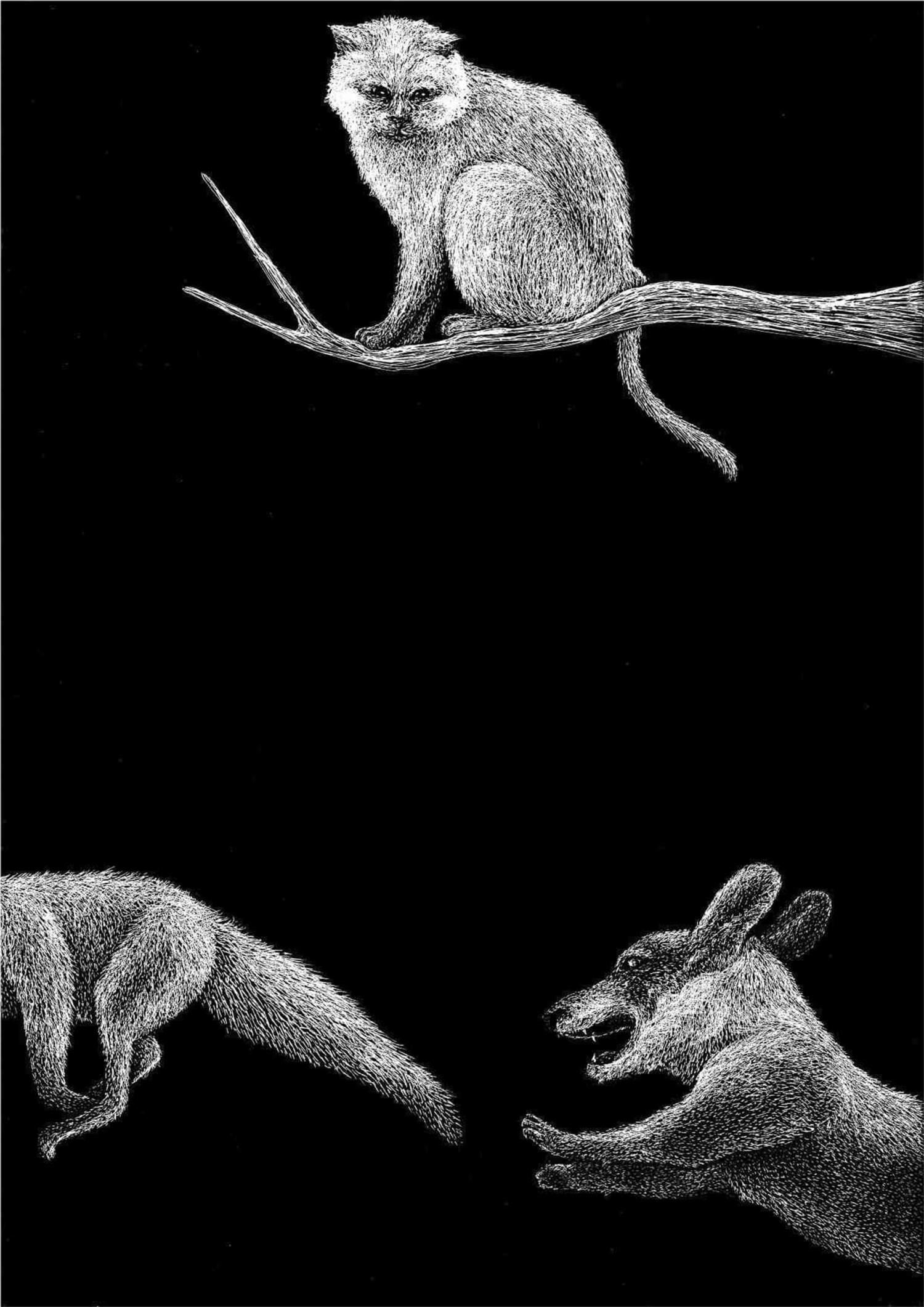 Il gatto e la volpe - Lia Mariani