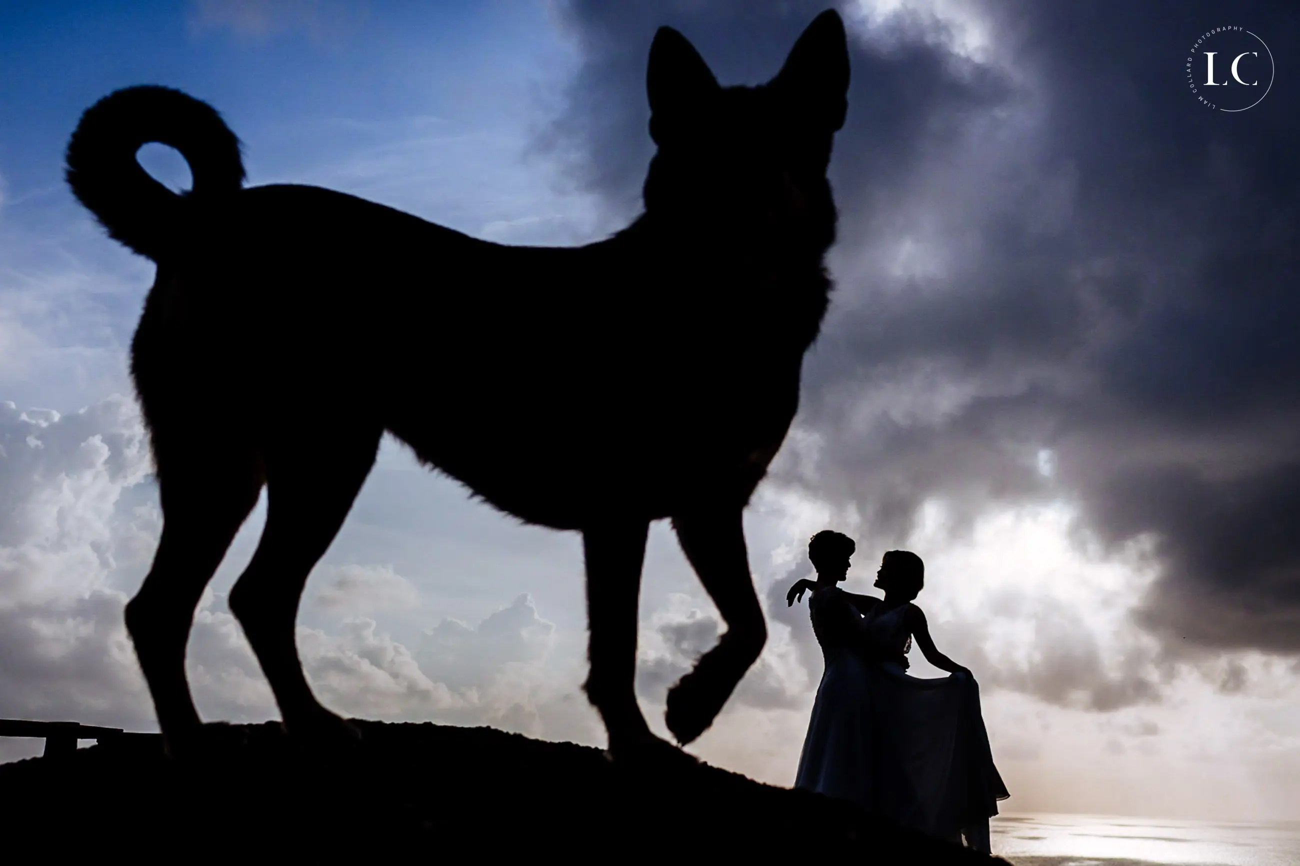 Silhouette of couple and dog at night