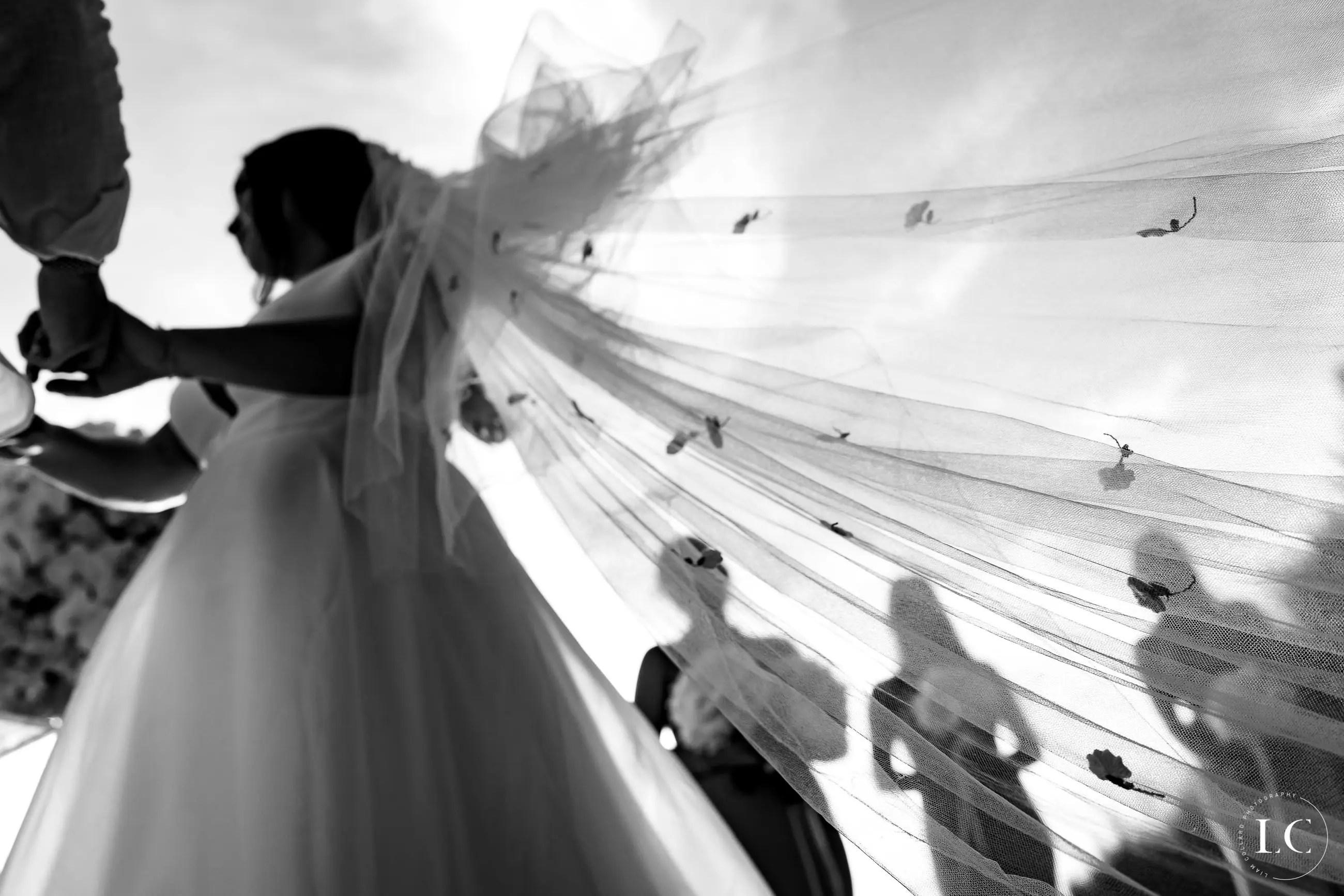 Bride's veil in the wind