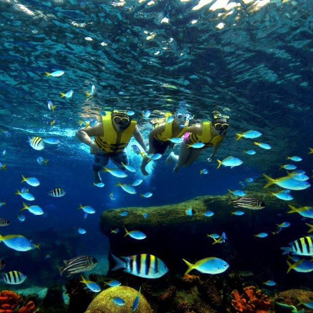 Marine Life Park, Singapore