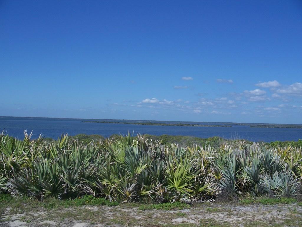 Beautiful Apollo Beach Florida