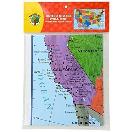 Back to School Toddler Pre-school Elementary School Classroom Teaching Tree United States Wall Map
