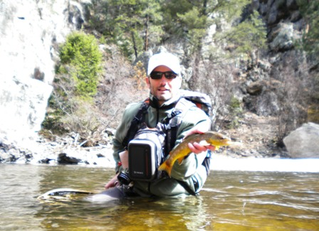 Brown Trout on the Big Thompson River
