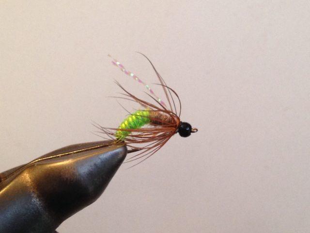 Trout Flies for the Cache La Poudre River.