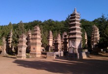 Pagoda Forest in the Morning