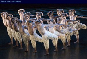 Male swans from Matthew Bourne's Swan Lake
