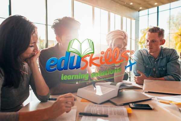 Sitio web Eduskills