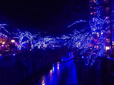 目黒川沿いのイルミネーション!青の光がキレイです。