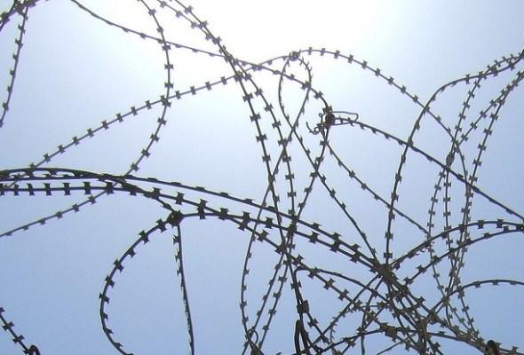Fri invandring: en realitet utan den traditionella välfärden
