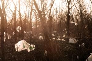 Plastposer blir oftest brukt til søppel i Skandinavia. Foto: Jonathan Kos-Read CC.BY.SA.